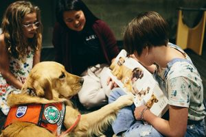 UBC study demonstrates dogs promote page turning